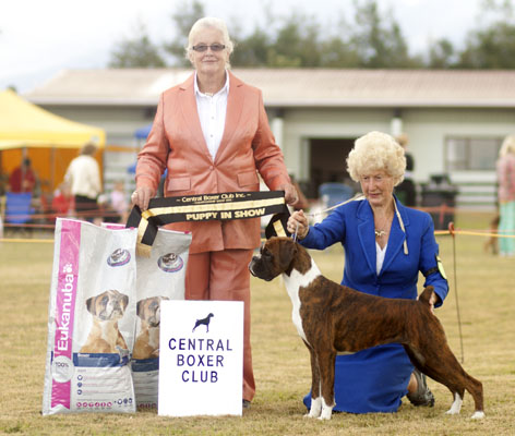 Lainee Best Puppy in Show, Central Boxer Club
