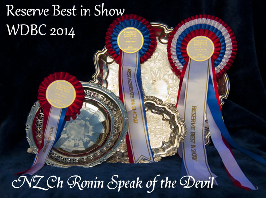 Reserve Best in Show!!